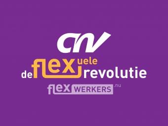 De flexuele revolutie
